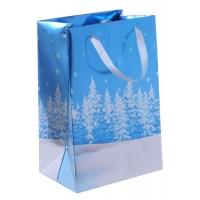 Пакет вертикальный подарочный на Новый Год