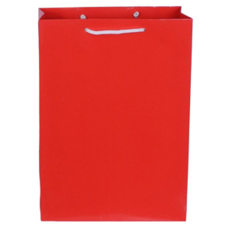 Пакет подарочный бумажный ламинированный голография. Размер: 210*300*110 мм.,6 видов 1шт.