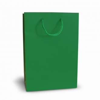 Пакет бумажный подарочный зеленый с ручками